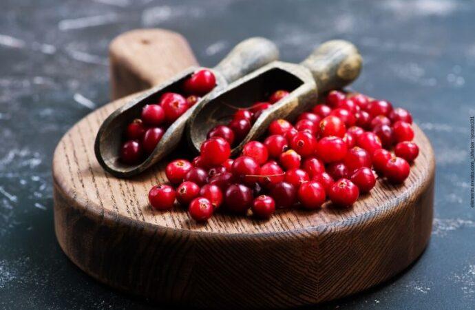 Meinungen zur Wirkung von Cranberry Kapseln
