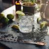 Gin entdecken und erleben am besten beim Tasting